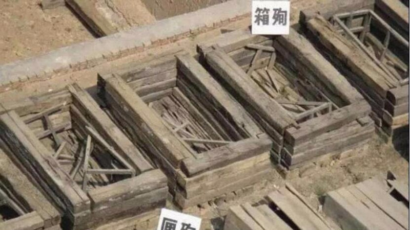 古代殉葬者是先被處死然后被下葬嗎?的頭圖
