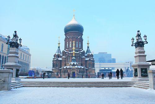 哈尔滨有几所大学