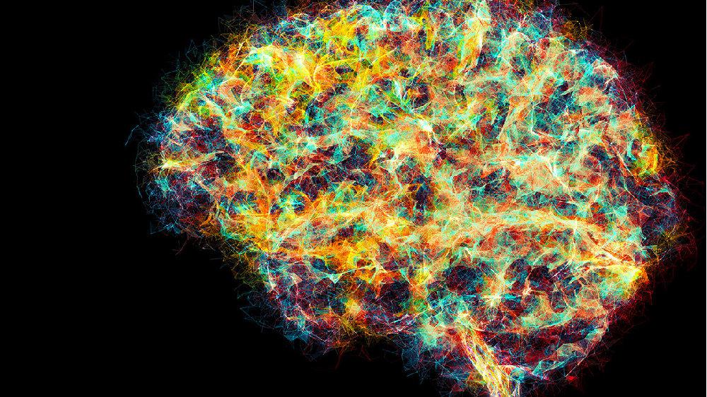 通向复杂大脑的神秘数学之旅