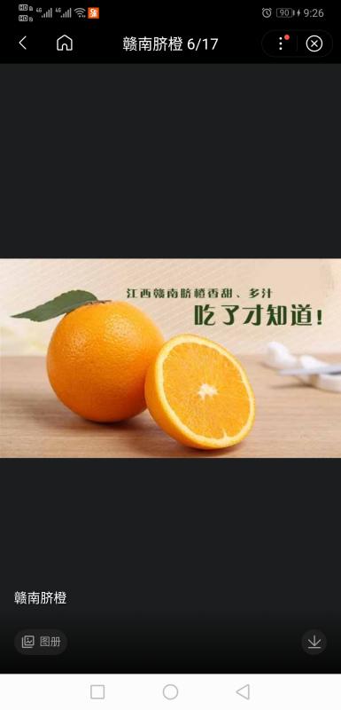 正宗赣南脐橙是不是龙沟的?