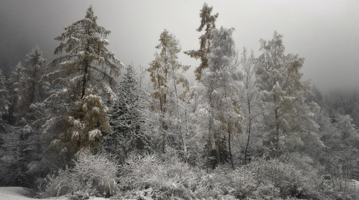 今年冬天会是一个冷冬?拉尼娜已经出现,2021年气候或大变