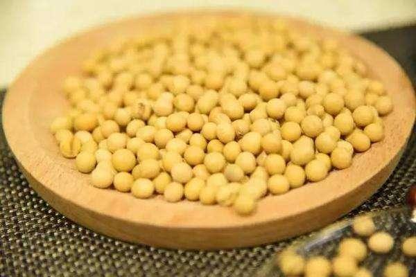玉米收获之后,不想种植小麦,种什么可以赚钱?
